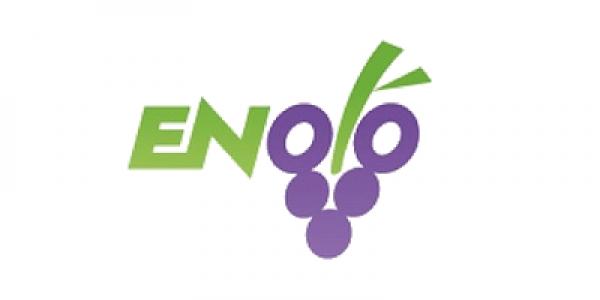 Enolò è la prima Plataform Economy per il B2B del vino